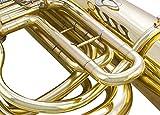 Glory GTU4 Brass Advanced Bb Tuba -4key, Gold
