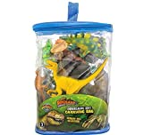 23 PC DINOSAUR SET IN CARRY BAG, Case of 12