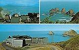 Oceanside Oregon House On The Hill Multiview Vintage Postcard K50479
