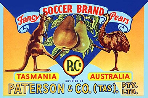 Buyenlarge Fancy Soccer Brand Pears - Gallery Wrapped 24''X36'' canvas Print., 24'' X 36'''' by Buyenlarge