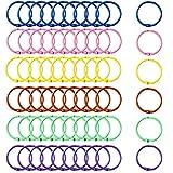 Blulu 60 Pieces Metal Binder Rings Colorful Keychains Loose Leaf Binder Ring Book Rings Keyrings, 6 Colors