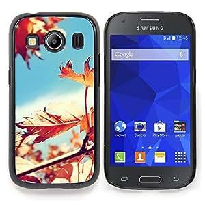 Stuss Case / Funda Carcasa protectora - Soleado Árbol Hojas Hermosa - Samsung Galaxy Ace Style LTE/ G357