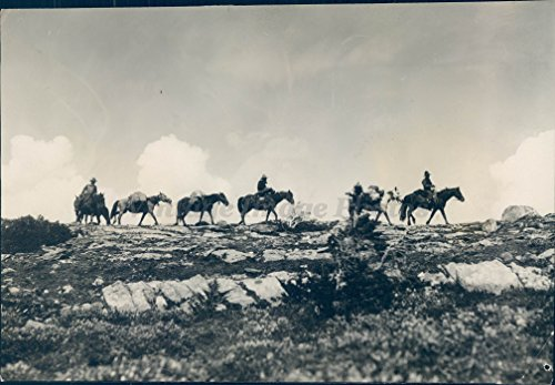 Vintage Photos 1928 Photo Skyline Trail Sierra Nevada Club Horses Maccarib Pass Jasper Park