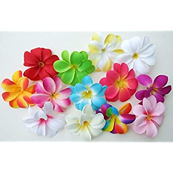 Amazon 50 assorted hawaiian plumeria frangipani silk flower 50 assorted hawaiian plumeria frangipani silk flower heads 3 artificial flowers mightylinksfo