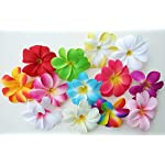 50-Assorted-Hawaiian-Plumeria-Frangipani-Silk-Flower-Heads-3-Artificial-Flowers-Head-Fabric-Floral-Supplies-Wholesale-Lot-for-Wedding-Flowers-Accessories-Make-Bridal-Hair-Clips-Headbands-Dress