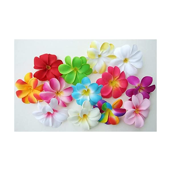 (50) Assorted Hawaiian Plumeria Frangipani Silk Flower Heads – 3″ – Artificial Flowers Head Fabric Floral Supplies Wholesale Lot for Wedding Flowers Accessories Make Bridal Hair Clips Headbands Dress