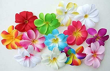 Amazon 50 assorted hawaiian plumeria frangipani silk flower 50 assorted hawaiian plumeria frangipani silk flower heads 3quot artificial flowers mightylinksfo