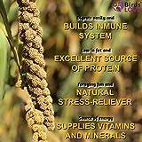 Birds LOVE Fat & Lovely Spray Millet Non-GMO for