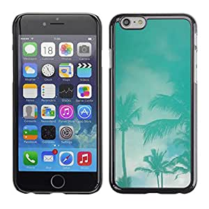 Paccase / SLIM PC / Aliminium Casa Carcasa Funda Case Cover para - Palms Teal Storm Miami California Sky - Apple Iphone 6