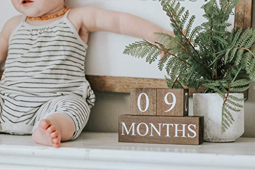 Sweet Sage Studio Wood Baby Milestone Blocks - 6 Color Styles - Best Baby Age Photo Props, Wooden Age Blocks, Baby Photography Props, Nursery Decor, (Dark Stain) ()