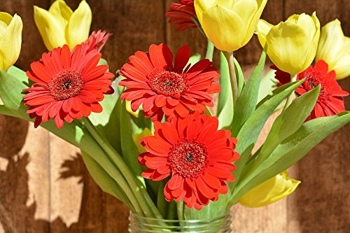 Home Comforts LAMINATED POSTER Cut Flowers Bouquet Tulips Gerbera Spring Flowers Poster 24x16 Adhesive Decal