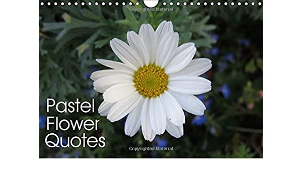 pastel flower quotes beautiful flowers and inspiring quotes