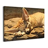 TRdY Page The Desert Fox Sleeps On A Stone Painted Canvas Inner Framed Wall Decor Modern Artwork for Office Home Decor Pictures Ready to Hang for Living Room Bathroom