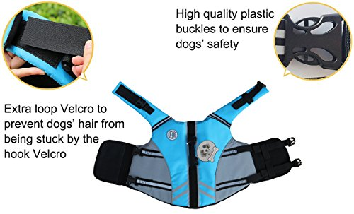 Vivaglory New Sports Style Ripstop Dog Life Jacket with Superior Buoyancy & Rescue Handle, Lake Blue, M