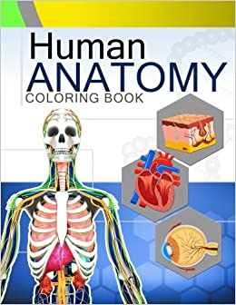 Human Anatomy Coloring Book: Anatomy & Physiology Coloring Book 2nd ...