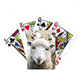 Terrestrial Organism Sheep Animal Picture Poker Playing Card Tabletop Board Game Gift
