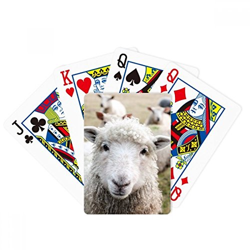 Terrestrial Organism Sheep Animal Picture Poker Playing Card Tabletop Board Game Gift by beatChong