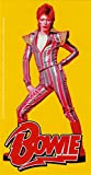david bowie decal - David Bowie - Posing in Striped Jumpsuit with Logo on Yellow - Sticker / Decal