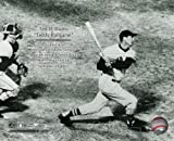 Ted Williams Boston Red Sox Final At Bat 8x10 Photo