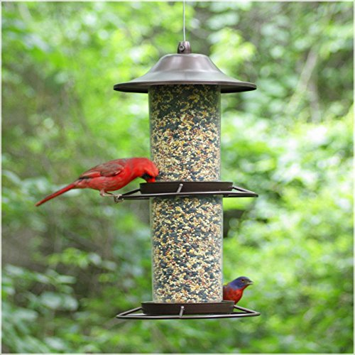 Perky Pet Large Panorama Bird Feeder