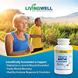 Anti Inflammatory Supplement Proteolytic Enzyme