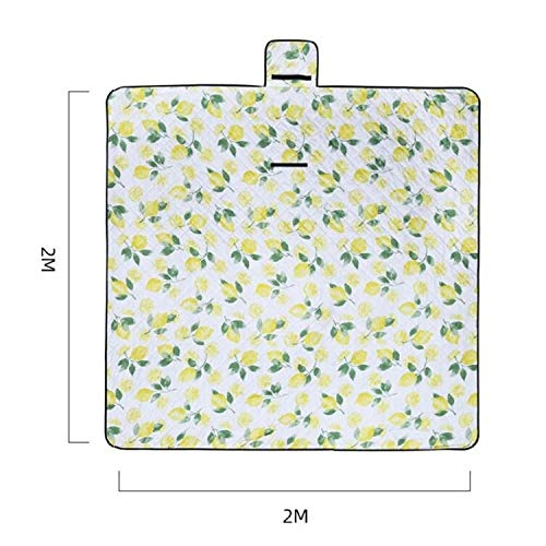 XiaoMinZhang Machine Washable Outdoor Picnic Moisture-Proof Waterproof Thickened Beach Camping Mat, Size: 2 x 2m Durable (Color : Ash Vine Leaf)