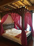KQCNIFVNKLM Lace four corner mosquito net bed canopy,Chinese retro gauze hotel netting bedding mosquito net-C Queen1