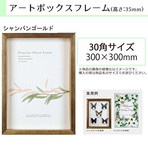 A.P.J. BOXフレーム アートボックスフレーム(高さ:35mm) 30角サイズ(300×300mm) シャンパンゴールド 0021768658