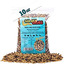 10oz Golden Grubs Dried Black Soldier Fly Larvae Tasty BSF