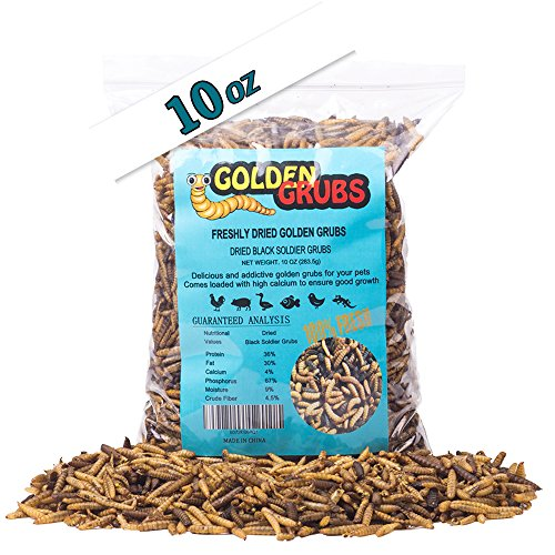 10oz Golden Grubs Dried Black Soldier Fly Larvae Tasty BSF