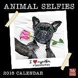 Sellers Publishing 2018 Animal Selfies - I Love Myselfie Wall Calendar (CA0105)