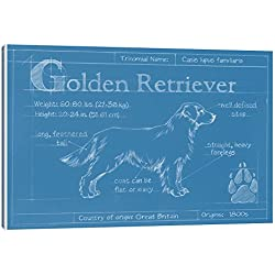Great gifts for dog lovers golden retriever wall art golden retriever wall art blueprint of a golden retriever canvas print 12 x 075 malvernweather Gallery