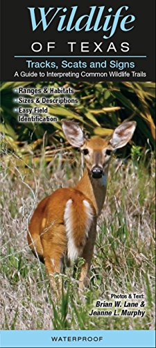 Wildlife of Texas Tracks, Scats and Signs A Guide to Interpreting Common Wildlife -