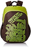 American Tourister 27 Ltrs Brown Casual Backpack (AMT CRUNK 2017 BKPK 05- BROWN)