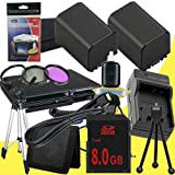 TWO NP-FV100 Lithium Ion Replacement Batteries w/Charger + 8GB SDHC Memory Card + Mini HDMI + Tripod + 3 Piece Filter Kit for Sony NEXVG10, NEXVG20 Interchangeable Lens HD Handycam Camcorder DavisMAX Accessory Bundle
