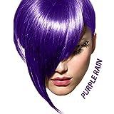 Arctic Fox Semi Permanent Hair Color Dye 8 Ounce (Purple Rain)