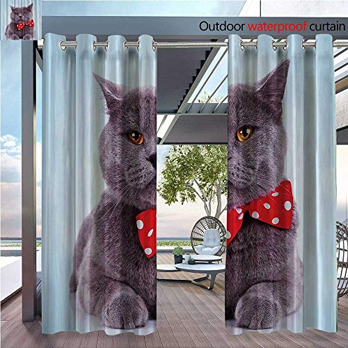 DESPKON Shading of Outdoor Curtains Tuxedo Gray Scottish Fold Theme with Red White ka Dots Tie Bow Baby Blue Fun Home Suitable for Outdoor Room. W63 x L63 INCH