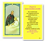 Blessed By His Holiness Pope Francis St Camillus of Lellis Laminated Holy Card