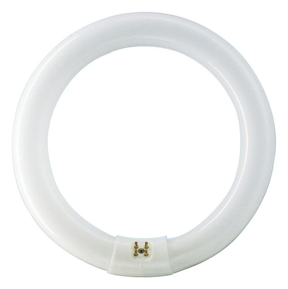 Philips Master TL-E 32 W G10Q - Lá mpara circular ( 32W 4000K / 840), Blanco frí o Blanco frío 559685