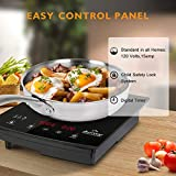 duxtop 8310 1800W Portable Induction Cooktop