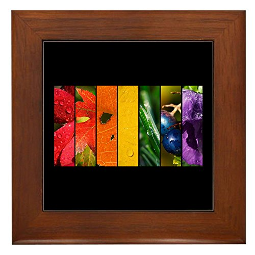 (Framed Tile Rainbow Drops Gay Pride Flag)