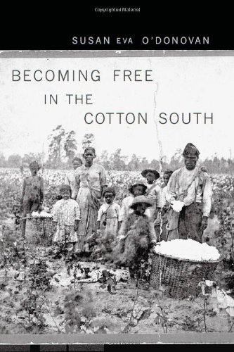 Becoming Free in the Cotton South