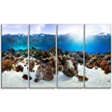 Designart Indonesia Underwater Panorama Photography on Canvas Art Wall Photgraphy Artwork Print