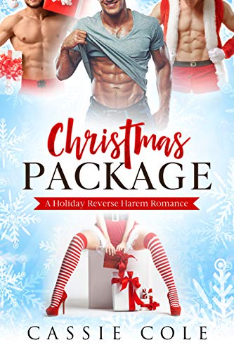 Christmas Package by Cassie Cole