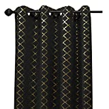 Kashi Home Natalie Printed 54X84 Grommet Blackout Curtain, Black/Gold
