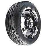 Prometer LL821 All-Season Radial Tire - 195/65R15 91H