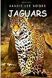 Jaguars - Sandie Lee Books, Sandie Books, 1495209792