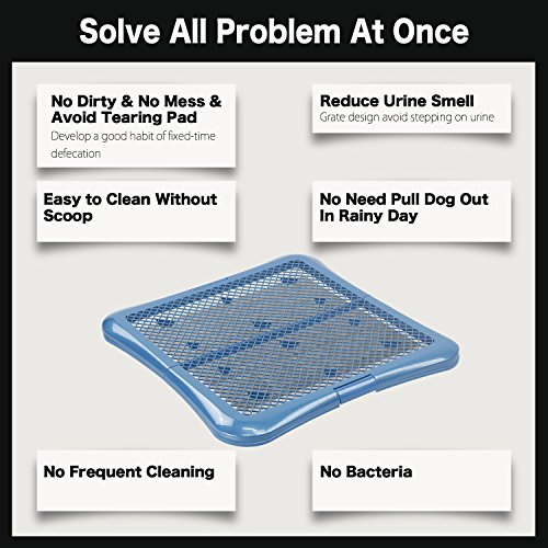 Petphabet Training Pad holder Floor Protection Dog Pad Holder Mesh Training Tray (L) by Petphabet (Image #2)