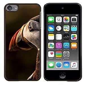 Planetar® ( Pájaro Sunset Ornitología Naturaleza linda ) Apple iPod Touch 6 6th Touch6 Fundas Cover Cubre Hard Case Cover