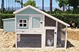 Precision Pet 7029202 Nantucket Chicken Coop/Rabbit Hutch